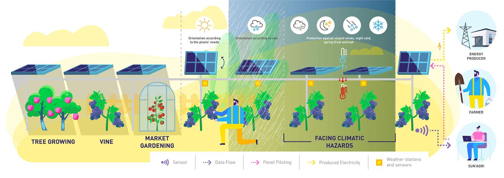 agrowoltaika rolnictwo a panele słoneczne i sztuczna inteligencja