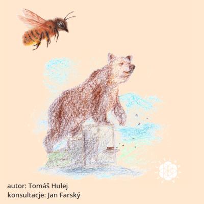 Pszczelarstwo w historii ludzkości